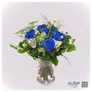 Blaue Ecuador Rosen