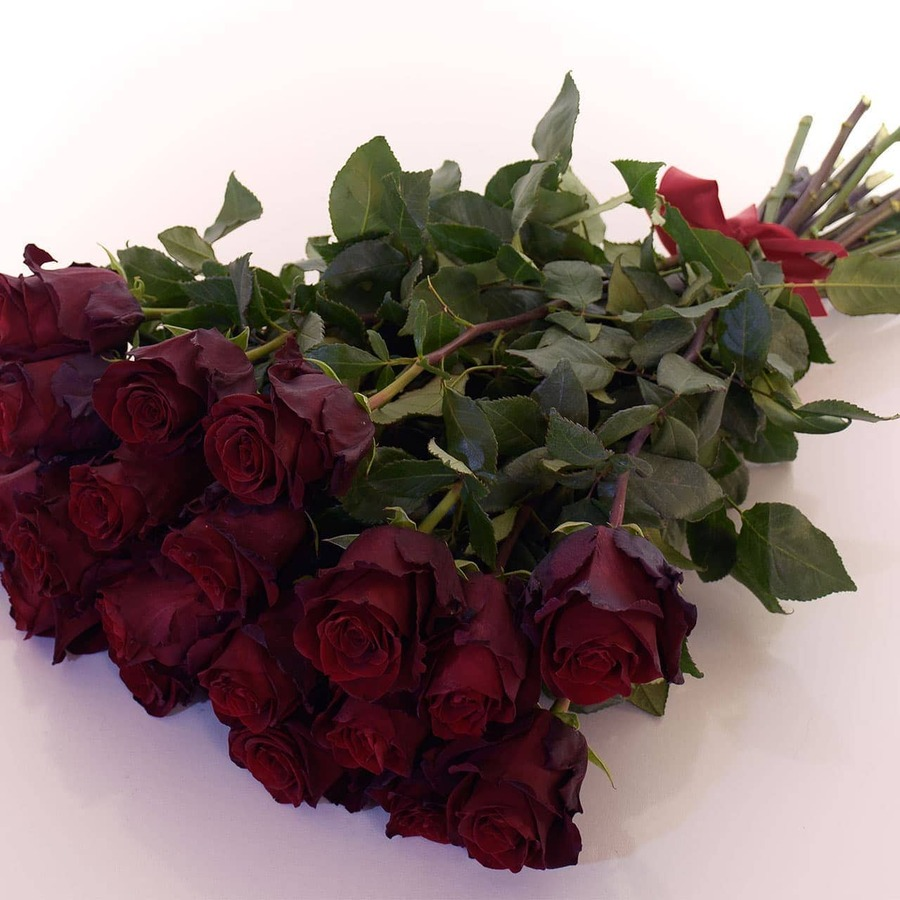 rote-rosen-lieferservice-900x900